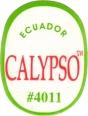 ECUADOR CALYPSO ™ #4011