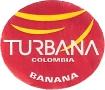 TURBANA COLOMBIA BANANA
