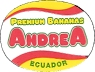 PREMIUM BANANAS ANDREA ECUADOR